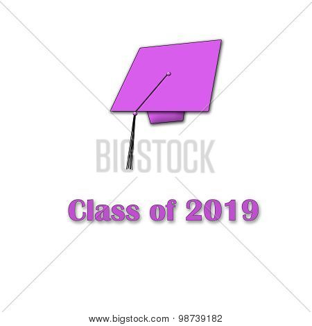 Class of 2019 Pink on White Single Large