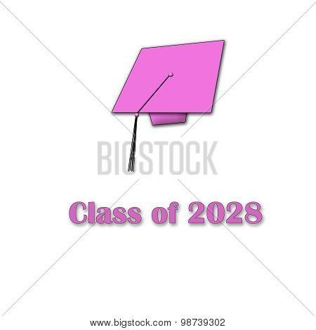Class of 2028 Pink on White Single Large