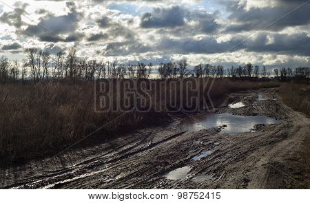 Mud And Puddles On The Dirt Road Near Kyiv