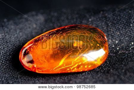 Amber With Insect Inside