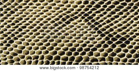 Snake Skin Pattern On Fabric.
