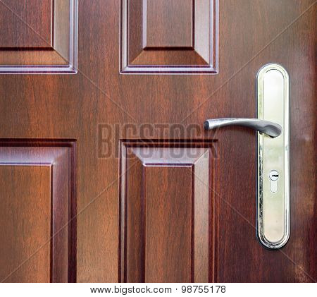 Modern wooden door with a door handle