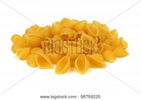 Shell pasta isolated on white