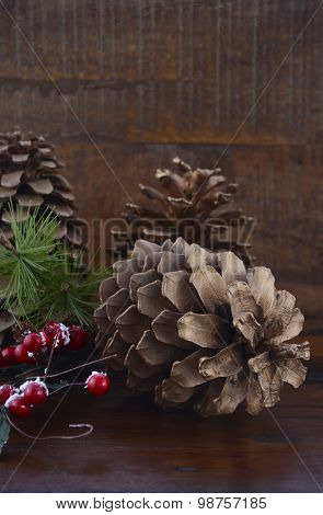 Christmas Pine Cones Decorations
