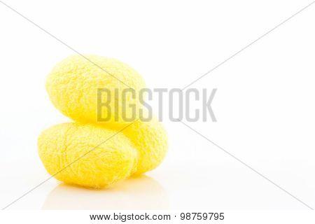 Silkworm Cocoon.