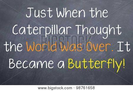 Caterpillar into Buttefly