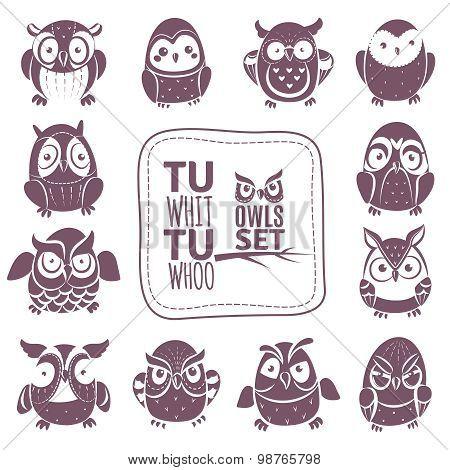 Vector Owls Set
