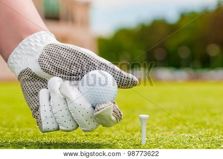 Closeup Hand Holding A Golf Ball Near The Tee