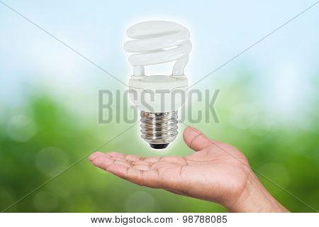 Fluorescent Light Bulbs In Hand