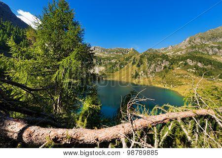 Lago Di Campo - Adamello Trento Italy