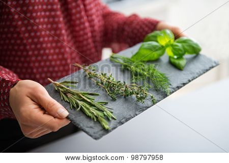Closeup Of Woman's Hand Holding Slate Of Fresh Herbs