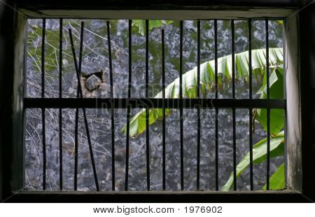 Vietnam Window Jail