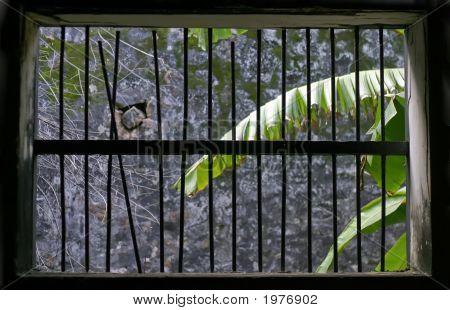 Vietnam Window Jail