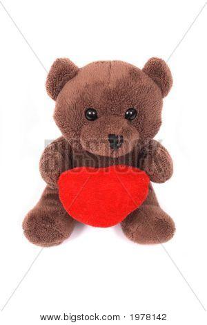 Toy - Bear