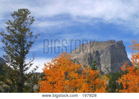 Fall At Hallet Peak - 28570