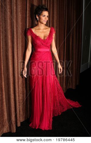 LOS ANGELES - FEB 22:  Halle Berry arrives at the 13th Annual Costume Designers Guild Awards at Beverly Hilton Hotel on February 22, 2011 in Beverly Hills, CA