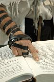 stock photo of tora  - Jewish man wearing phylacteries pointing with his finger to text in a prayer book - JPG