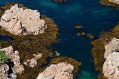 Nugget Point Rocks