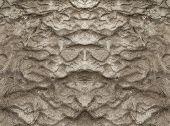 Постер, плакат: Wet Sand Texture