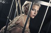 Woman Bound With A Rope In Japanese Technique Shibari Looks Like Spiderweb In Cage poster