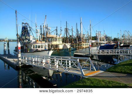 Shrimp And Fishing Fleet At Dock