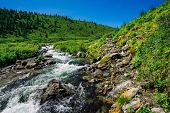 Fast Water Stream Of Mountain Creek Among Boulders In Bright Sunlight In Valley. Vivid Green Grass,  poster