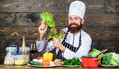 Eat Healthy. Dieting Concept. Man Wear Hat And Apron Hold Lettuce. Bearded Hipster Professional Chef poster