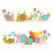 Group Of Cartoon Character Snails With Flowers. Vector Creature Cochlea In Grass And Bright Flowers  poster