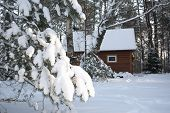 Houten huis In Winter Forest