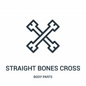 Straight Bones Cross Icon Isolated On White Background From Body Parts Collection. Straight Bones Cr poster