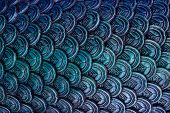Abstract Black Blue Scale Texture Background Scale,mermaid Scale. poster
