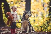 Active Girl Play With Dog In Autumn Forest. Active Rest And Child Activity On Fresh Air Outdoor. poster