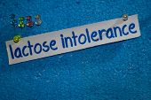 Lactose Intolerance Text On The Paper Is Attached To The Styrofoam With Push Pins, Health Care Conce poster