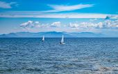 Small Optimist Boats With White Sails, Blue Sky And Sea Background poster