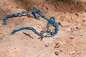 Blue Rope On The Beach, Close Up. Blue Rope On Hot Summer Desert Beach Sand. Selective Focus Image O poster