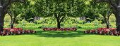 picture of manicured lawn  - Beautifully manicured park garden in summer - JPG