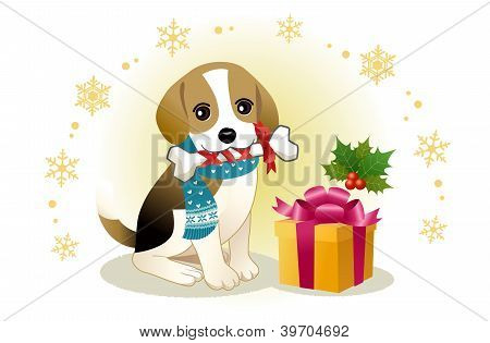 Beagle Dog Biting Ribboned Bone With Christmas Present Box