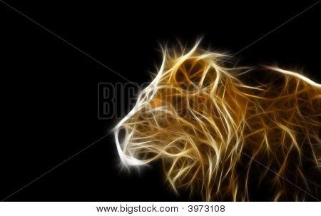 Lion Fractal