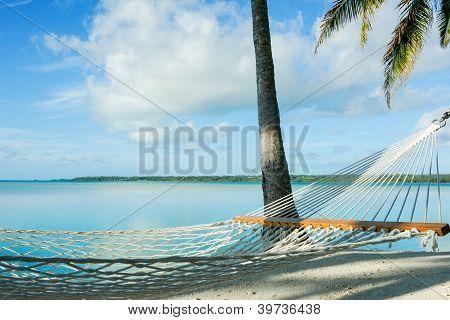 Hammock in tropical setting.