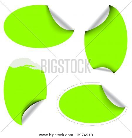 Green Oval Labels