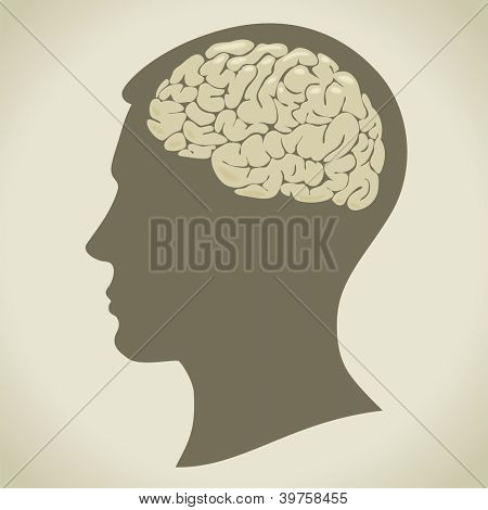 the silhouette of a man's head and volume image of the brain