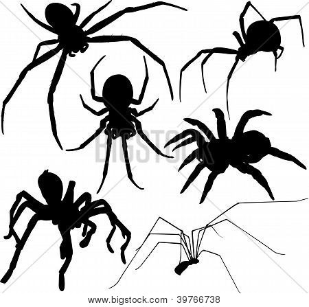Spiders silhouettes. Editable.