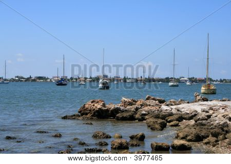 Sailboats By The Seashore