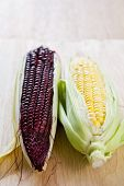 stock photo of corn-silk  - Fresh yellow and purple corn with husk