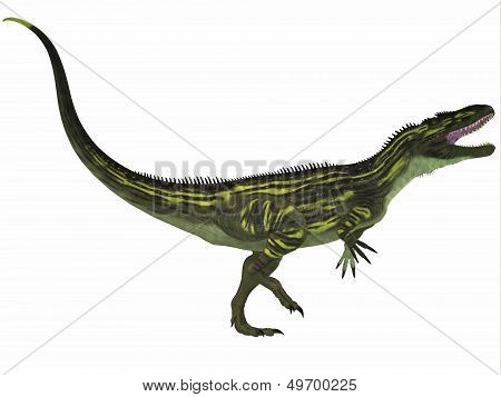 Torvosaurus On White