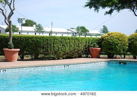 Back Yard Swimming Pool
