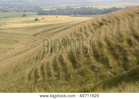 Countryside Near Calne. Wiltshire. UK