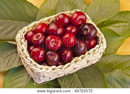 Basket Of Delicious Cherries