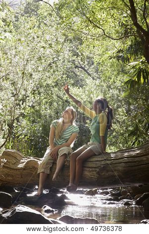 Young Friends Sitting on Log