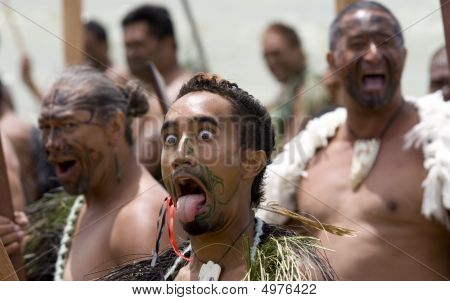 Maori Warrior With Tongue Sticking Out